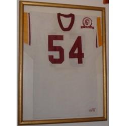 ND beats SC again pin
